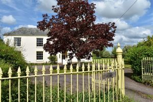 Ford Street, Wellington   Up to 6 Acres of paddocks available